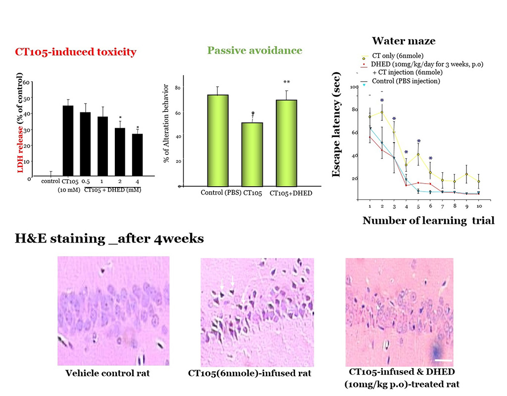 DHED-reduced-neurotoxicity